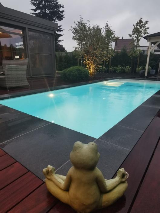 Zwembad-Eksaarde